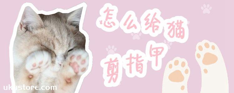 怎么给猫剪指甲