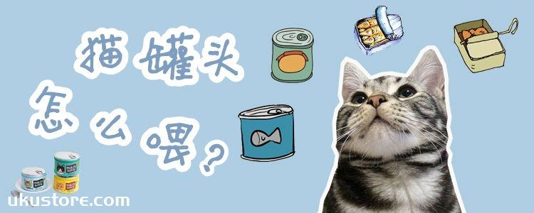 猫罐头怎么喂