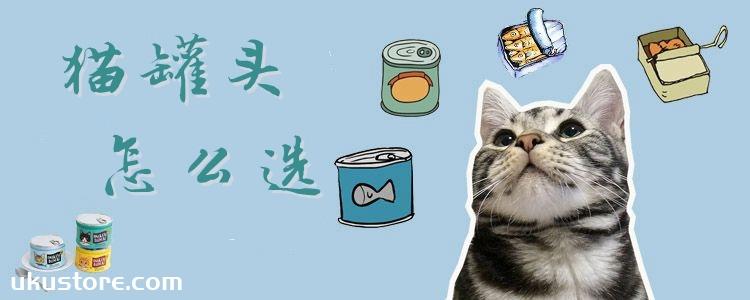 猫罐头怎么选