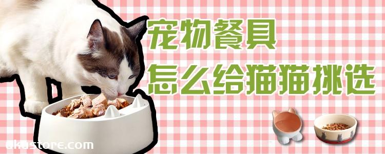 宠物餐具怎么给猫猫挑选