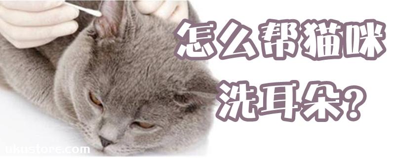 怎么帮猫咪洗耳朵