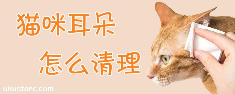 猫咪耳朵怎么清理