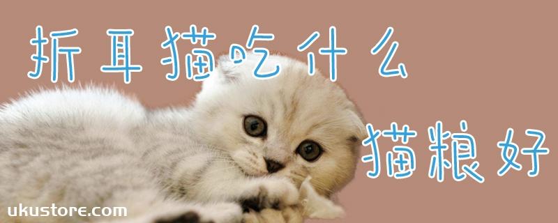 折耳猫吃什么猫粮好