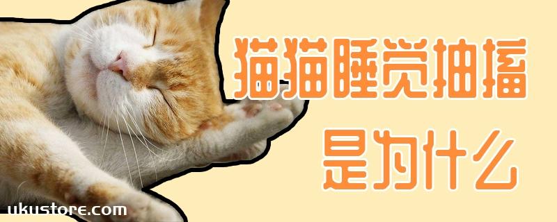 猫猫睡觉抽搐是为什么