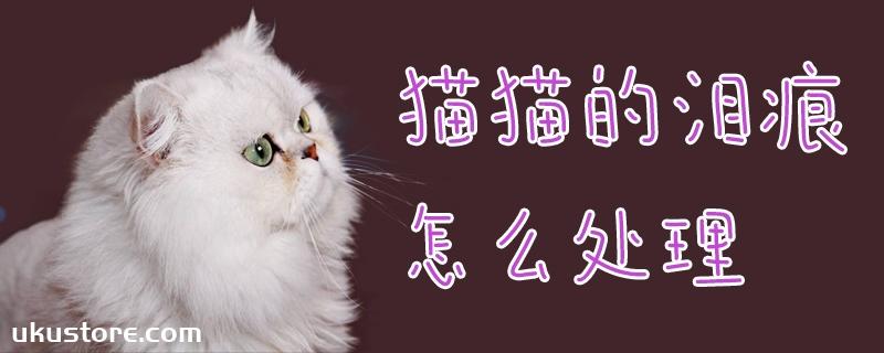 猫猫的泪痕怎么处理