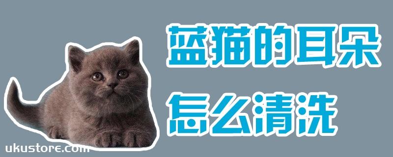 蓝猫的耳朵怎么清洗