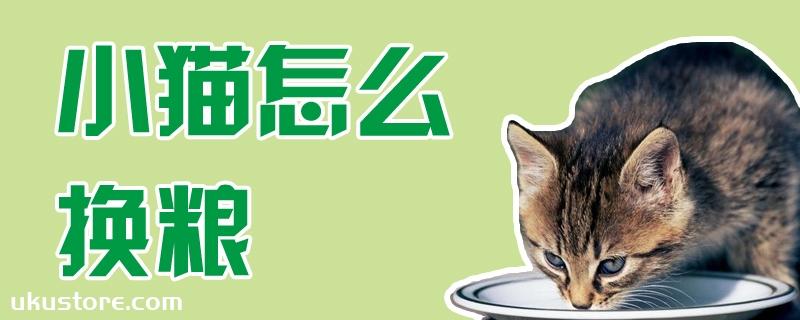小猫怎么换粮