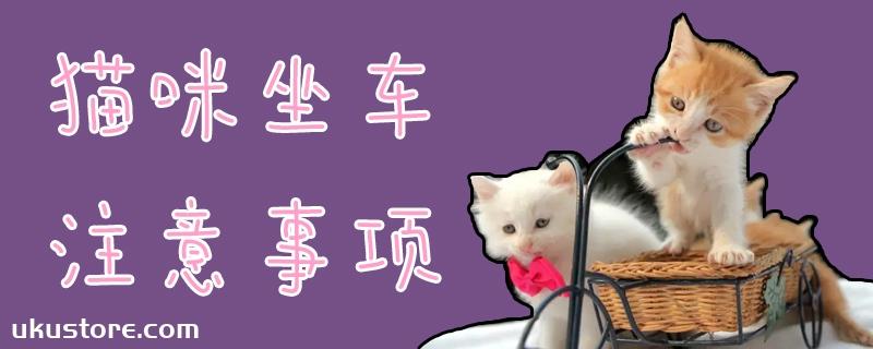 猫咪坐车注意事项