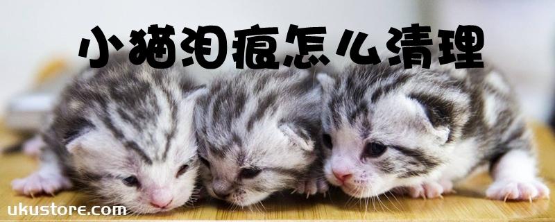 小猫泪痕怎么清理