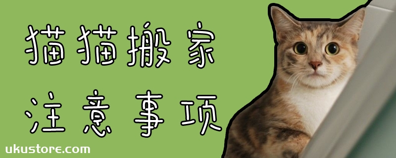 猫猫搬家注意事项