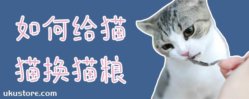 如何给猫猫换猫粮