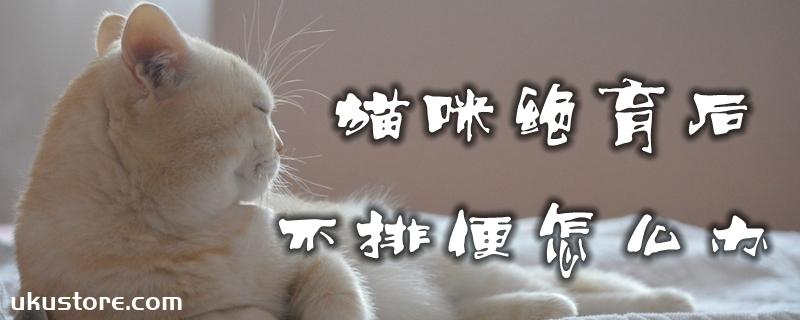 猫咪绝育后不排便怎么办