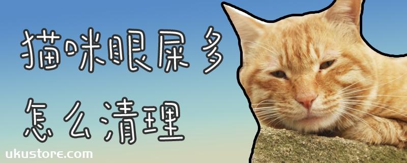 猫咪眼屎多怎么清理