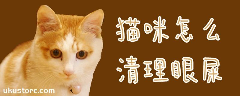 猫咪怎么清理眼屎