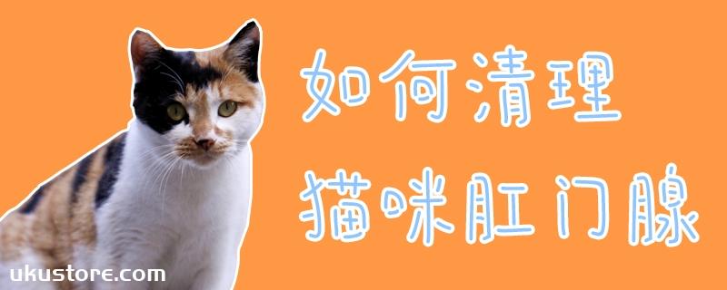 如何清理猫咪肛门腺